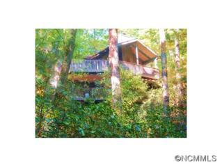 190  N Eastshore Dr  , Lake Toxaway, NC 28747 (MLS #576501) :: Exit Realty Vistas
