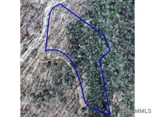 117  Teddy Bear Lane  , Hendersonville, NC 28792 (MLS #576507) :: Exit Realty Vistas
