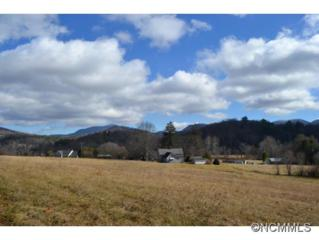 2085  Cane Creek Road  , Fletcher, NC 28732 (MLS #576509) :: Exit Mountain Realty
