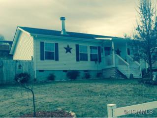 204  Nicholas Drive  , Asheville, NC 28806 (MLS #576528) :: Exit Realty Vistas