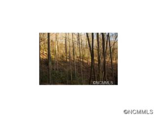 12B  Indian Camp Mountain  , Rosman, NC 28772 (MLS #576562) :: Exit Mountain Realty