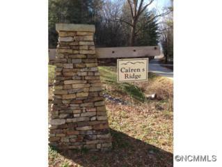 Lot 7  Cairens Ridge Drive  , Mills River, NC 28742 (MLS #576616) :: Exit Realty Vistas