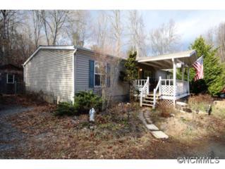 234  Fowler Lane  , Brevard, NC 28712 (MLS #576678) :: Exit Realty Vistas