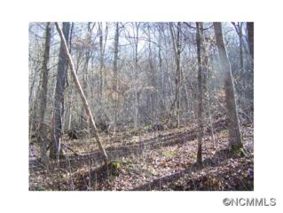 Lot 97  Whispering Woods Path  , Mars Hill, NC 28754 (MLS #576681) :: Exit Realty Vistas