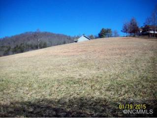 52  Ivy Meadows  , Weaverville, NC 28787 (MLS #576683) :: Exit Realty Vistas