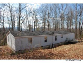 249  Bane Road  , Mills River, NC 28759 (MLS #576748) :: Exit Realty Vistas