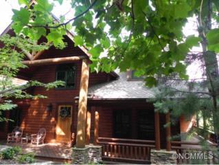319  Big Bear Trail  , Zirconia, NC 28790 (MLS #576750) :: Exit Realty Vistas