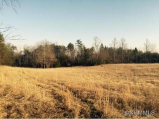 10.5 ac.  Critter Crossing  , Lake Lure, NC 28746 (MLS #576761) :: Caulder Realty and Land Co.