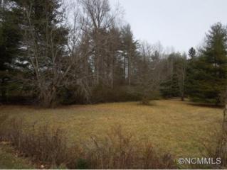 TBD  Mine Gap Road  , East Flat Rock, NC 28726 (MLS #577137) :: RE/MAX Four Seasons Realty