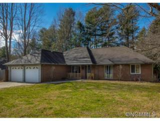 270  Country Club Circle  , Brevard, NC 28712 (#577752) :: Exit Mountain Realty