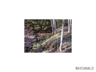 00  Rough Creek Rd  , Waynesville, NC 28785 (#577909) :: Exit Realty Vistas