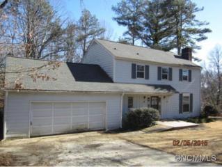 4  Beechwood Lakes Dr  , Hendersonville, NC 28792 (MLS #577971) :: Exit Realty Vistas