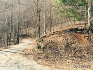 Lot 6  Woody's Drive  , Bat Cave, NC 28710 (MLS #578027) :: Caulder Realty and Land Co.