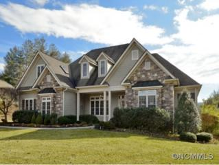 64  Pro Court Drive  , Hendersonville, NC 28739 (MLS #578136) :: RE/MAX Four Seasons Realty