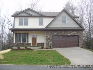 208  Beck Creek Cir  , Flat Rock, NC 28731 (MLS #578365) :: Exit Realty Vistas