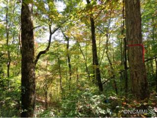 0  Riverside Drive  , Bryson City, NC 28713 (MLS #578369) :: Exit Realty Vistas