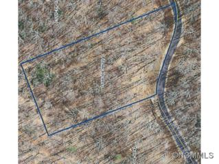 Lot 77  Royal Wulff Drive  , Cullowhee, NC 28723 (MLS #578439) :: Exit Realty Vistas