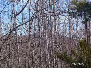 Lot #216  Cherry Hill  , Mill Spring, NC 28756 (MLS #578462) :: Exit Realty Vistas