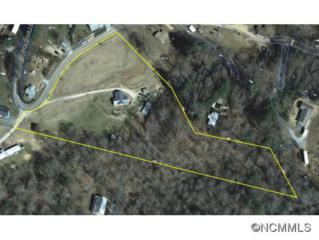 760  Pole Miller Ext  , Brevard, NC 28712 (#578640) :: Exit Realty Vistas