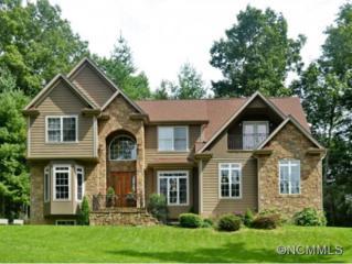108  Dumont Court  , Fairview, NC 28730 (#578706) :: Exit Realty Vistas