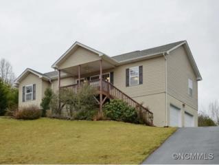 325  Macneil Way  , Weaverville, NC 28787 (#578708) :: Exit Realty Vistas