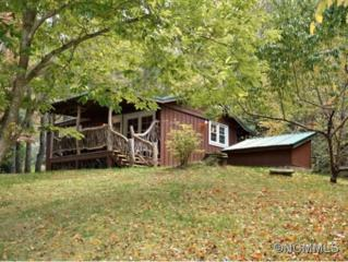 41  Jacks Mountain Lane  , Hendersonville, NC 28792 (#579216) :: Caulder Realty and Land Co.