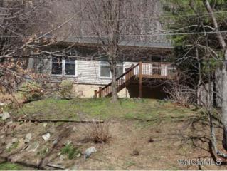 10  Finlay Ridge Rd  , Hendersonville, NC 28739 (#579342) :: Exit Mountain Realty