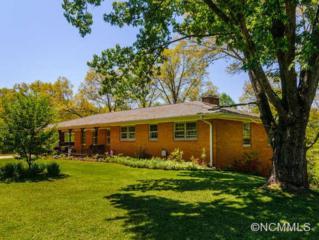 73  Salem Rd  , Weaverville, NC 28787 (#579363) :: Exit Realty Vistas