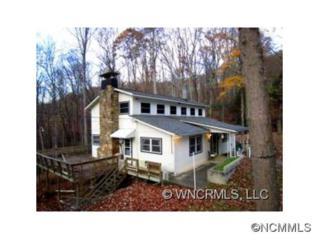 41  Upper Saw Branch Road  , Candler, NC 28715 (#579408) :: Exit Realty Vistas