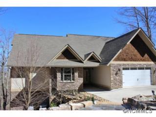1025  High Vista Drive  , Mills River, NC 28759 (#579471) :: Exit Realty Vistas