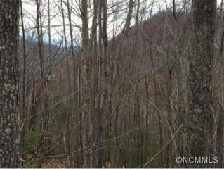 452  Feather Falls Trail  , Black Mountain, NC 28711 (#579563) :: Exit Realty Vistas