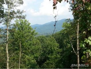 431  West Chapel Road  , Black Mountain, NC 28711 (#579631) :: Exit Realty Vistas