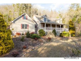 220  Acorn Lane  , Pisgah Forest, NC 28768 (#579761) :: Exit Mountain Realty