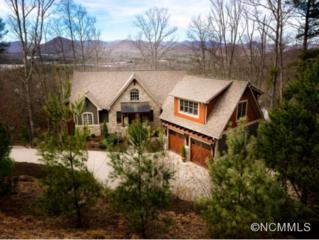 437  Coopers Hawk Drive  , Asheville, NC 28803 (#579763) :: Exit Realty Vistas