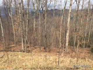 19  Crockett Ridge Rd, Lot 189  , Black Mountain, NC 28711 (#579788) :: Exit Realty Vistas
