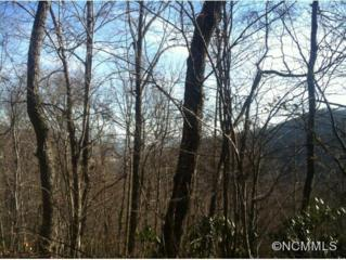 0000  Ginseng Cove  , Candler, NC 28715 (#579980) :: Exit Realty Vistas