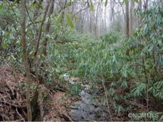 L6,34,35  Timber Run Road  , Hendersonville, NC 28739 (#580047) :: Exit Realty Vistas