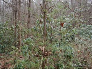 L6,35  Timber Run Road  , Hendersonville, NC 28739 (#580053) :: Exit Realty Vistas