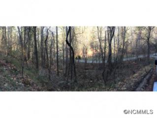 0  Robinhood Rd  , Asheville, NC 28804 (#580123) :: Exit Realty Vistas