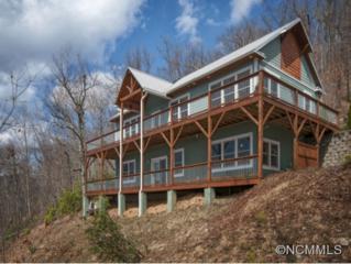 15  Wandering Ridge Drive  , Black Mountain, NC 28711 (#580134) :: Exit Realty Vistas
