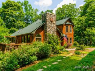 105  Sunny Ridge Drive  , Asheville, NC 28804 (#580136) :: Exit Realty Vistas
