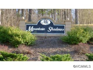35  Mountain Shadows  , Leicester, NC 28748 (#580203) :: Exit Realty Vistas