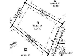 17  Bent Branch Lane  , Asheville, NC 28804 (#580242) :: Exit Realty Vistas
