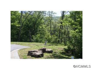 46  Camsyn Drive  , Weaverville, NC 28787 (#580274) :: Exit Realty Vistas