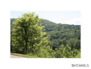 43  Camsyn Drive  , Weaverville, NC 28787 (#580275) :: Exit Realty Vistas