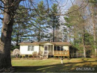 20  Stoney Nob Dirve  , Hendersonville, NC 28792 (#580283) :: Exit Realty Vistas