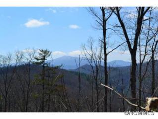 101  Saddletop  , Marshall, NC 28753 (#580285) :: Exit Realty Vistas