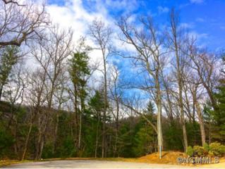 TBD  Elk Mountain Ridge  , Asheville, NC 28804 (#580324) :: Exit Realty Vistas