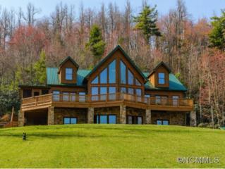 1458  Bell Mountain Road  , Zirconia, NC 28790 (#580337) :: Exit Realty Vistas
