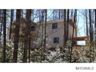164  Small Town Trail  , Brevard, NC 28712 (#580352) :: Exit Realty Vistas